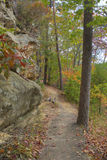 Path around cliff to the forest. stock photography