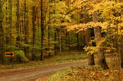 A path in autumn Royalty Free Stock Photos