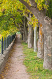 Path in autumn park Royalty Free Stock Photo