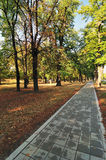 Path in Autumn Park. Autumn Morning Light in City Park with Walking Path Stock Photo