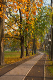 Path in autumn Park Stock Image