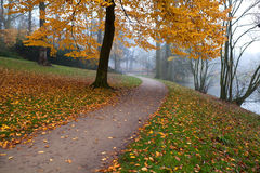 Path in autumn park Stock Photography