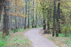 Path in the autumn park landscape Stock Photography