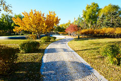 The path in the autumn park. The photo was taken in Times square Daqing city Heilongjiang province,China Stock Photos