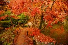 Path of autumn Royalty Free Stock Photo