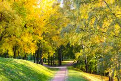 Path through an autumn wood on a bright sunny day in Tsaritsyno Park. Path through an autumn wood on a bright sunny day. Tsaritsyno Park, Moscow, Russia Royalty Free Stock Image