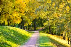 Path through an autumn wood on a bright sunny day in Tsaritsyno Park. Path through an autumn wood on a bright sunny day. Tsaritsyno Park, Moscow, Russia Stock Images