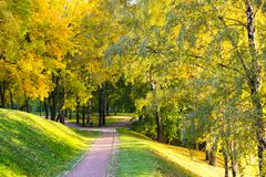 Path through an autumn wood in Tsaritsyno Park. Path through an autumn wood. Tsaritsyno Park, Moscow, Russia Royalty Free Stock Images
