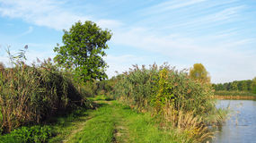 Path on the bank of a pond Stock Image