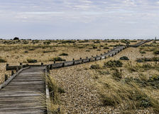 Path on beach royalty free stock images