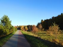Path and beautiful autumn trees, Lithuania stock photography