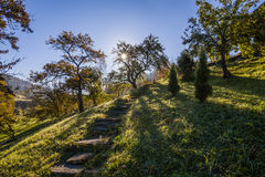 The path in a beautiful garden Stock Photos