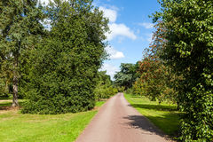 Path through Beautiful Summer Garden Royalty Free Stock Images
