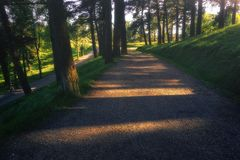 Path with beautiful sunlight in Pagasarri Royalty Free Stock Image