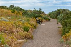 Path with bench in the park Stock Photography