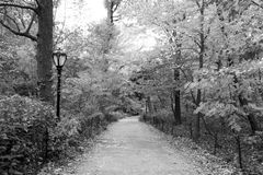 Path in black and white Royalty Free Stock Image