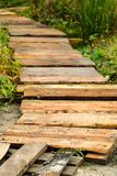 A path of planks in the grass royalty free stock image