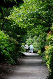 Path at Bodnant. Bodnant Garden is  in Tal-y-Cafn, Colwyn Bay, near Conwy, North Wales. Bodnant Garden is situated above the River Conwy and overlooks the valley Royalty Free Stock Image