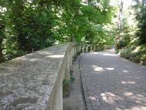 Path through the botanical garden Stock Photography