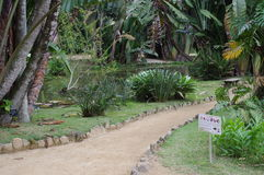Path in Botanical Garden Stock Images