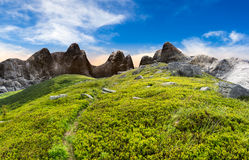 Path through boulders on hillside. Composite landscape with path through hillside meadow with white sharp boulders near cgi mountain peaks stock image