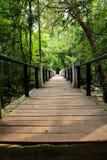 Path bridge Royalty Free Stock Photo