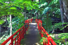 Path and bridge with red fence Stock Images
