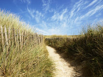 Path in Brittany Royalty Free Stock Photography