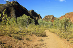 The path in Bungle Bungles (Purnululu) - Purnululu National Park Royalty Free Stock Image