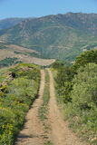 Path in the campaign Pyrenees Orientales France Royalty Free Stock Images