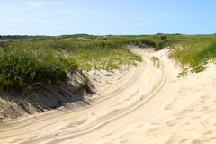 Path in Cape Cod Dunes stock photography