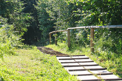 The path in the Carpathian Forest Reserve. Wooden path in the Carpathian Forest Reservetion Royalty Free Stock Photography