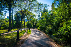 Path in Central Park, Manhattan, New York. Royalty Free Stock Image