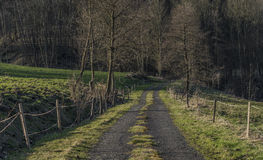 Path in Ceske Stredohori mountains. In spring evening royalty free stock photography