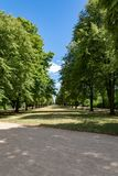 Path through the city park Royalty Free Stock Photo
