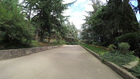 Path in citys park stock video footage