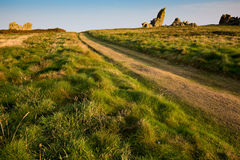 Path in coastline meadow Royalty Free Stock Photography