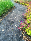 Path in a colorful autumn garden Stock Photo