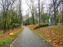 Path and colorful autumn trees, Lithuania stock photo