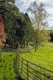The path. A country path and fence Stock Photo