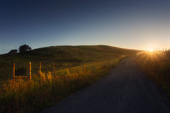 Path in the countryside at sunset Stock Photography
