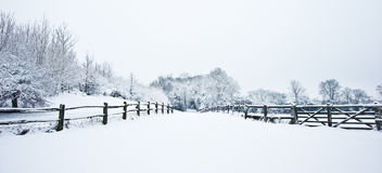 Path through countryside in Winter with snow Royalty Free Stock Images