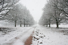 Path covered by snow leading to horizon Stock Images