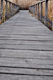 Path covered by wood Stock Images