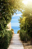 A path covered with wooden panels between the trees and bushes with a view to beautiful blue water of Mediterranean sea and a ray Royalty Free Stock Image