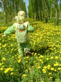 Path with dandelions. The joyful child goes on a lawn with dandelions Stock Photography