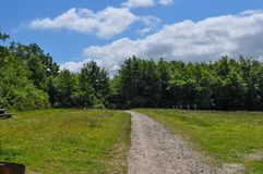 Path in Danish park. In city of Aalborg Stock Image