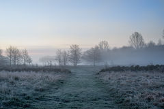 Path dawn morning haze Royalty Free Stock Photography