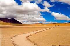 Path in a Desert Royalty Free Stock Photo