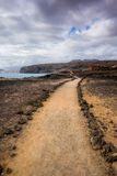 Path in the desert with ocean and cloudy sky Stock Images
